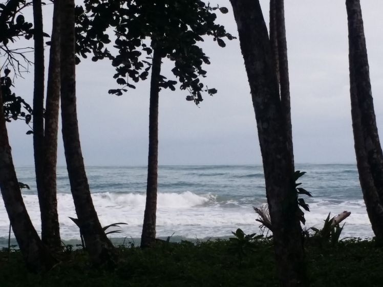 190212_091833_Playa Cocles Puerto Viejo.jpg