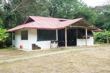 190225_Osa Conservation_Piro Station_Osa_DSC01558