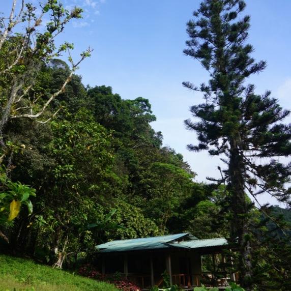 Our cabin / Nuestra cabaña