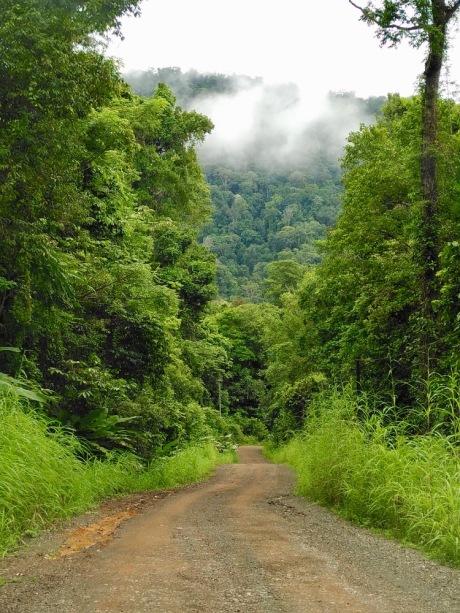 Road to Drake_IMG_20200620_091654